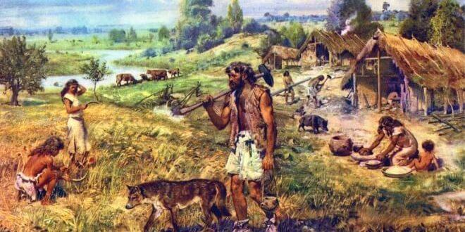 Картинки по запросу neanderthals agronomy