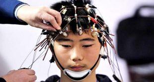 Учени разработват метод за качване на знания в човешкия мозък