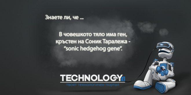 човешки ген с името на Sonic