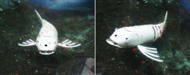 Снимка на Arduino риба-робот