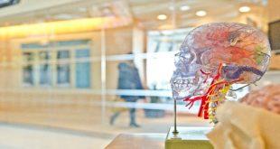 приложения за трениране на мозъка