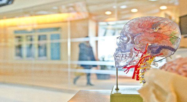 15 мобилни приложения за трениране на мозъка