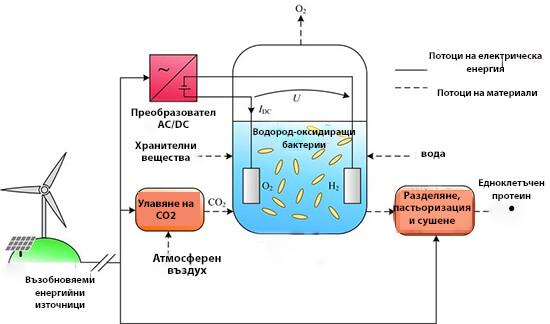 Схема на производството на храна от електричество