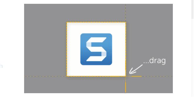 лого на програмата Snagit