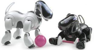"""Заглавна картинка на статията """"Sony подновява серията роботи Aibo"""""""