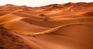 Учени откриха как да събират питейна вода от пустинен въздух