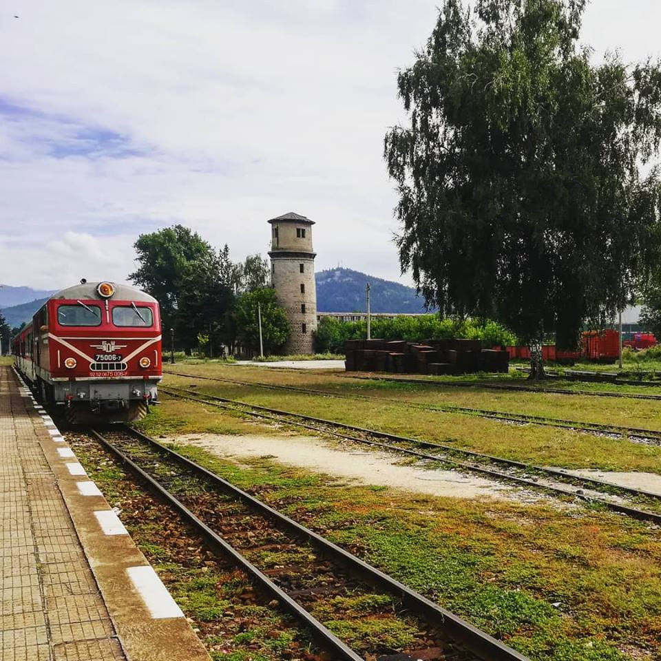 теснолинейка в България