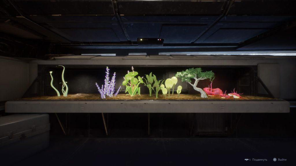 терариума с растения е приятно допълнение